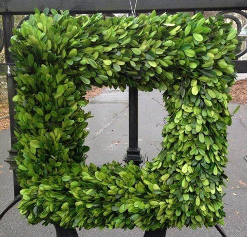 Mills Floral Preserved Boxwood Country Manor 20-inch Square Wreath Kendall and Everett