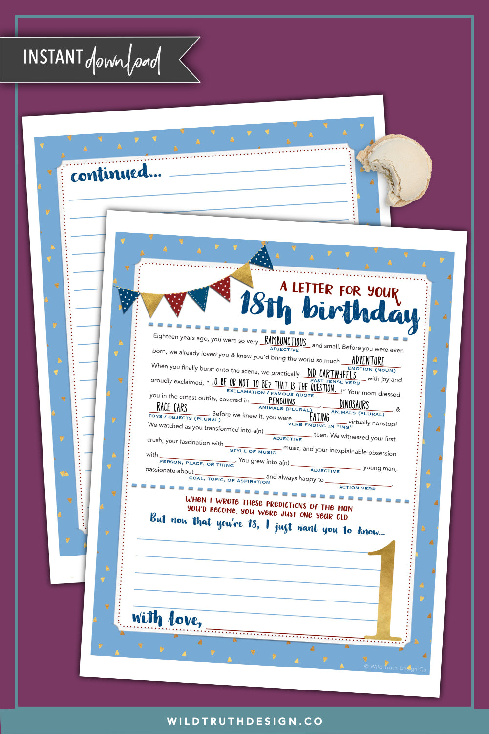 Boy S First Birthday Time Capsule Letter Mad Lib Printable
