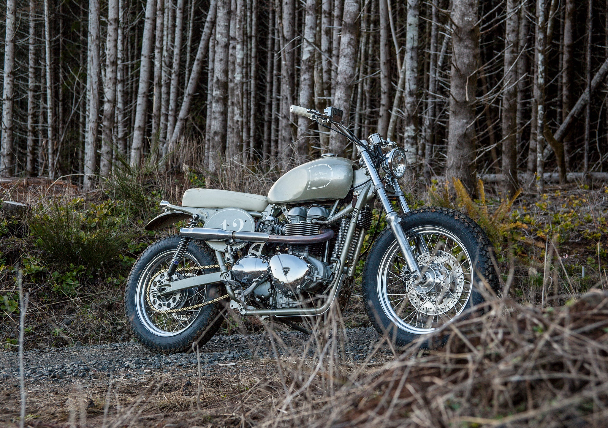 Rubber Soul: Triumph Build