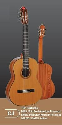 Chateau Guigal Rich's Classical Guitar South American Rosewood B/S (CJ Model)