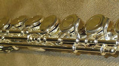 Flute Rental ($20 per month) BRAND NEW!!