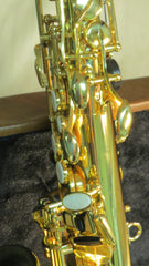 Chateau Alto Saxophone Student Model Series-21 - Lacquer Finish (CAS-21L)