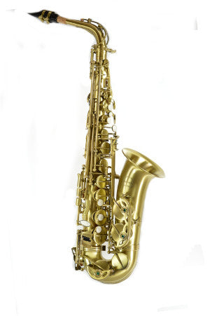 Chateau Student Model Alto Saxophone Antique finished body