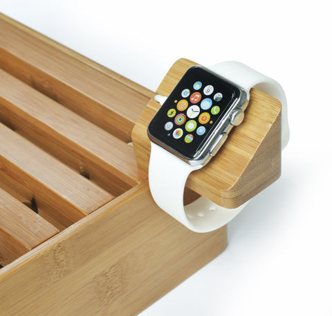 APPLE WATCH MOUNT