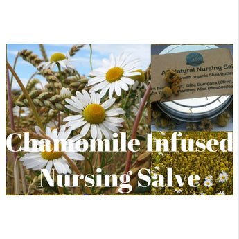 Our Chamomile Infused Nursing Salve