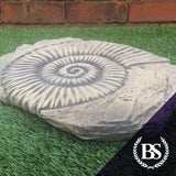 Ammonite Fossil - Garden Ornament Mould | Brightstone Moulds