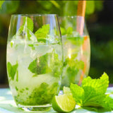 Mint Mojito Essential Oil Soy Melting Tarts