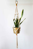 Colorful Macrame Plant Hanger