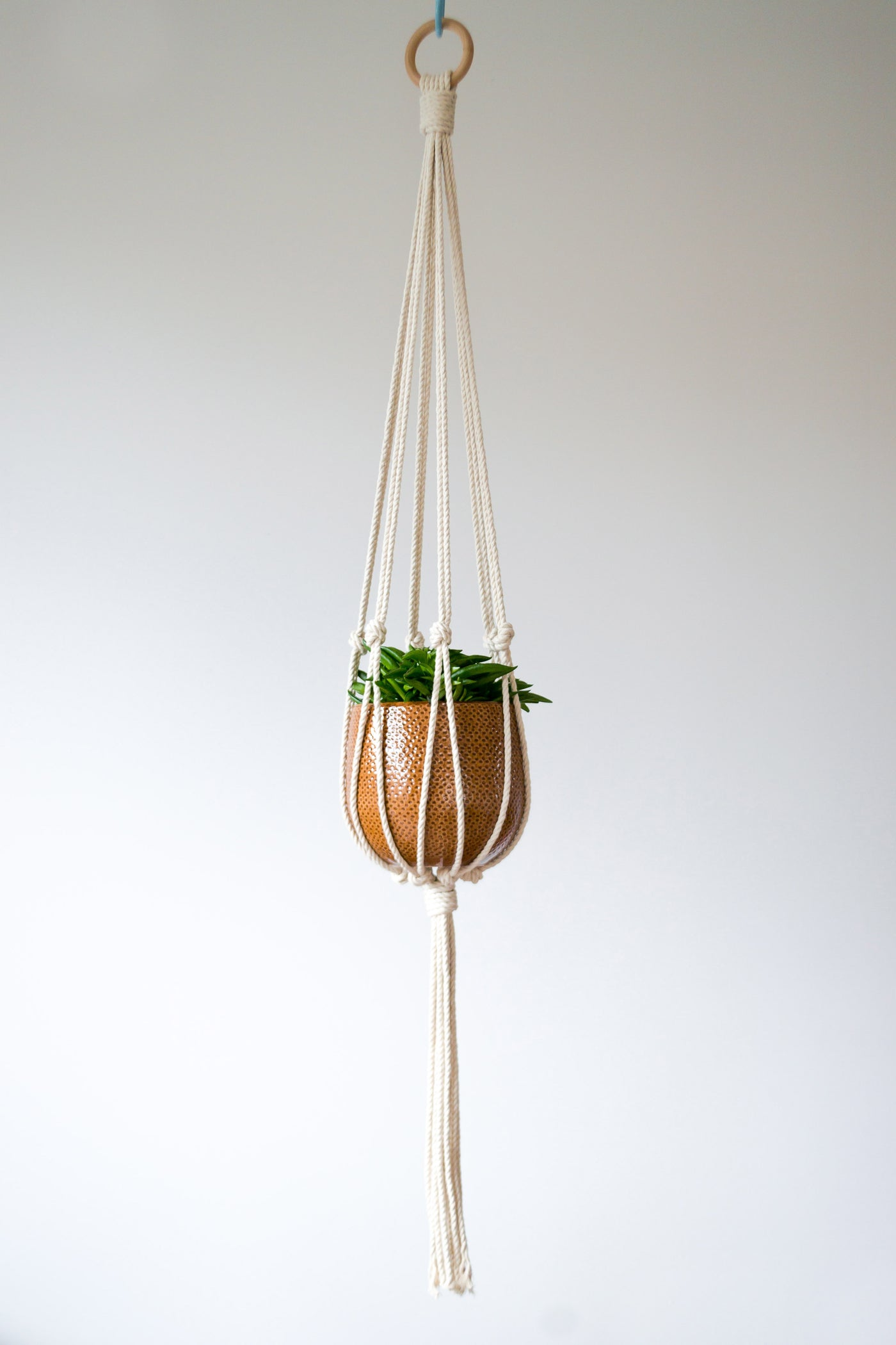 Minimalist Macrame Plant Hanger - Available in White, Mustard, Red, Salmon and Lavender