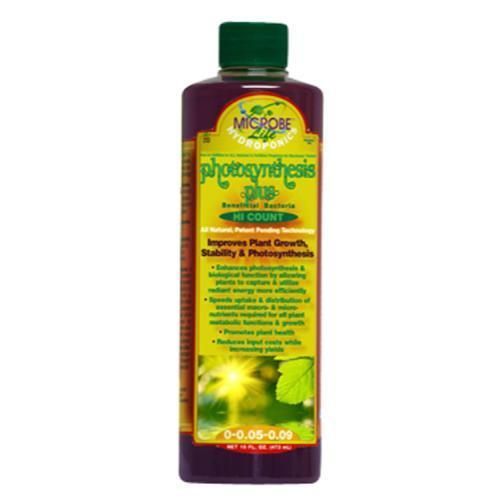 Microbe Life Photosynthesis Plus Quart (12/Cs)