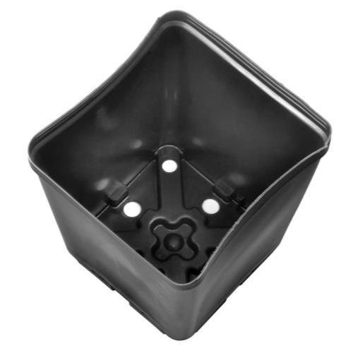 Gro Pro Square Plastic Pot 5.5 in x 5.5 in x 6 in Case of 200