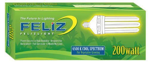 Feliz Blue Fluorescent 200 Watt 6500K (12/Cs)