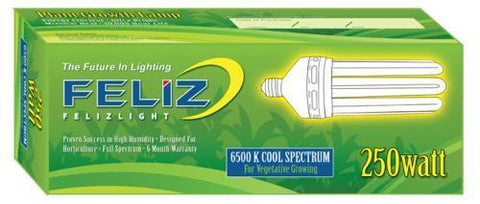 Feliz Blue Fluorescent 250 Watt 6500K (12/Cs)