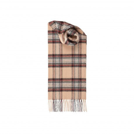 Johnsons of Elgin | Camel Stewart Tartan Check Cashmere Scarf | buy at The Cashmere Choice | London