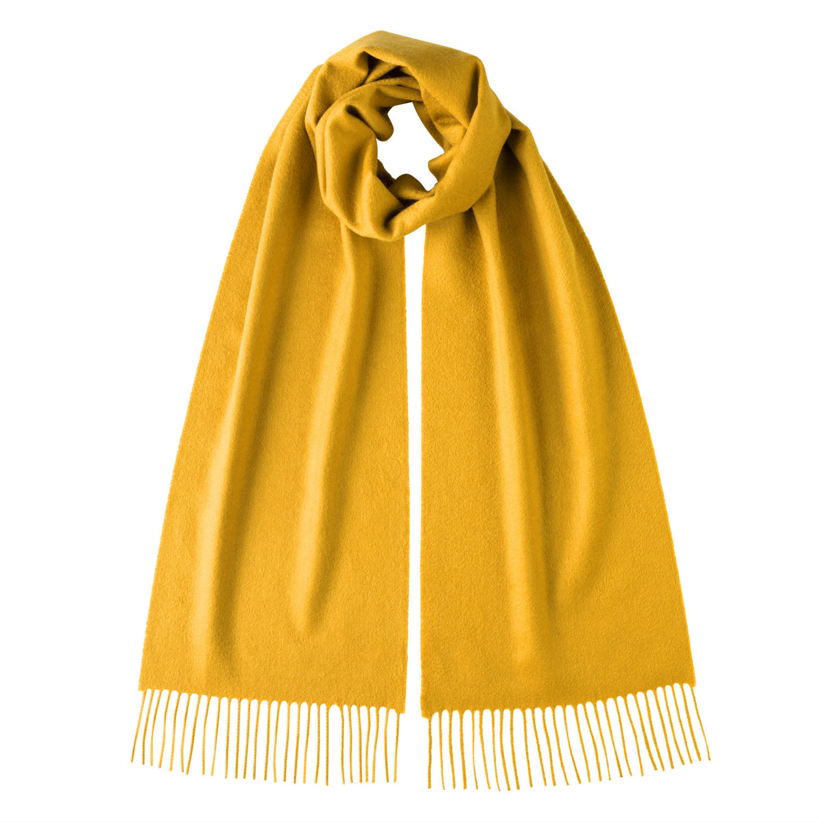 Johnsons of Elgin | Johnston Cashmere | Winter Jasmine Yellow Cashmere Scarf | shop now at The Cashmere Choice | London