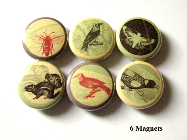 Woodland Creatures MAGNETS bee moth squirrel birds crow nature-Art Altered