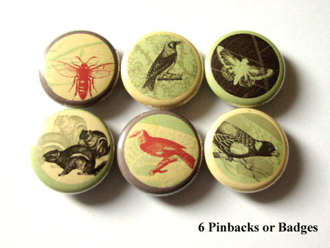 Woodland PINBACK BUTTONS pins badges birds bee moth squirrel nature - Art Altered  - 1