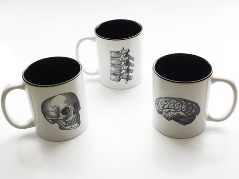 Skull Brain Spine Coffee Mugs Set of Three chiropractor male nurse practitioner doctor gift