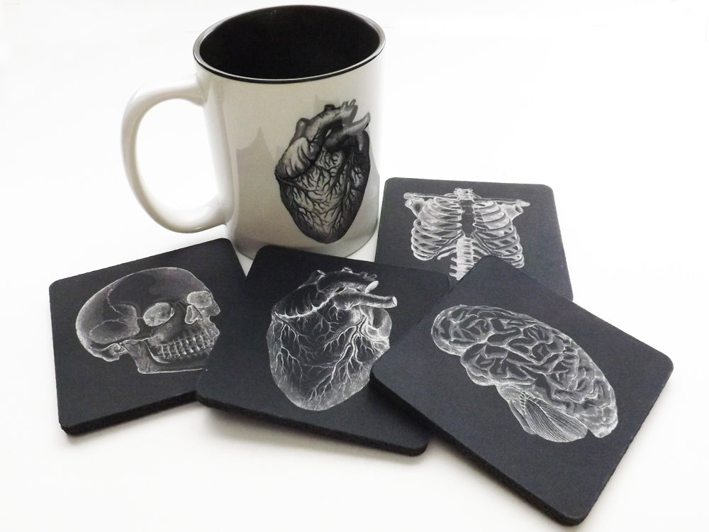 Anatomy Coffee Mug and Coasters Gift Set doctor nurse housewarming hostess medical school graduation-Art Altered