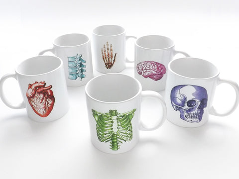 Colorful Anatomy Theme Coffee MUGS Set of 6 skull brain spine anatomical heart medical school graduation student nurse doctor gift