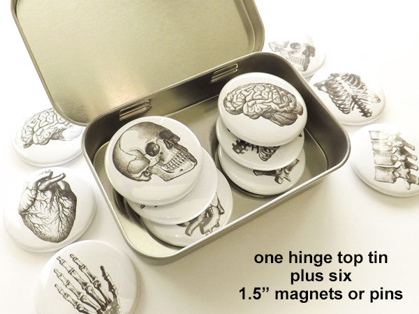 "Anatomy Gift 1 tin + six 1.5"" magnets or pins anatomical heart skull stocking stuffer party favor-Art Altered"