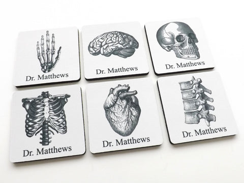 Personalized Anatomy Coasters Gift human body skull brain anatomical heart doctor nurse student medical rn pa np md