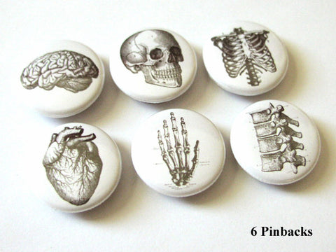 Anatomy Gift PINBACK BUTTONS pins badges skeleton brain anatomical heart skull medical body-Art Altered
