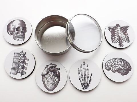 Anatomy Theme Gift Set Coasters neoprene nurse physician assistant doctor medical graduation back to school-Art Altered