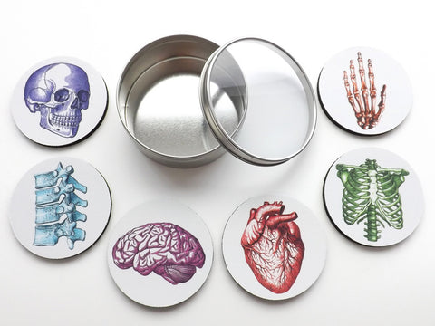 Doctor Anatomical Coasters Gift Set nurse practitioner physician assistant medical school graduation-Art Altered
