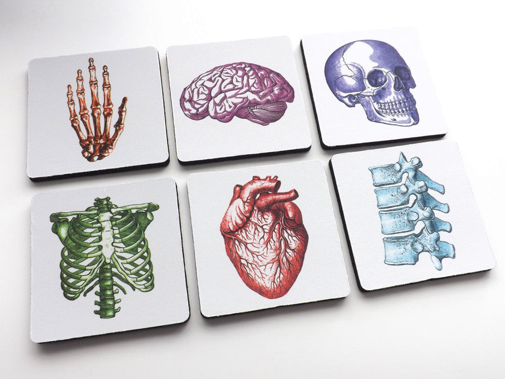Gift for Doctors Colorful Anatomical Theme Coasters nurse human body medical school skull brain anatomical heart-Art Altered
