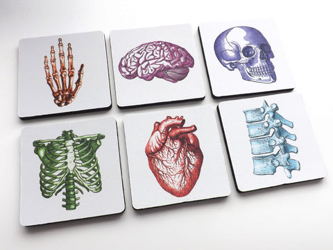 Gift for Doctors Colorful Anatomical Theme Coasters nurse human body medical school skull brain anatomical heart