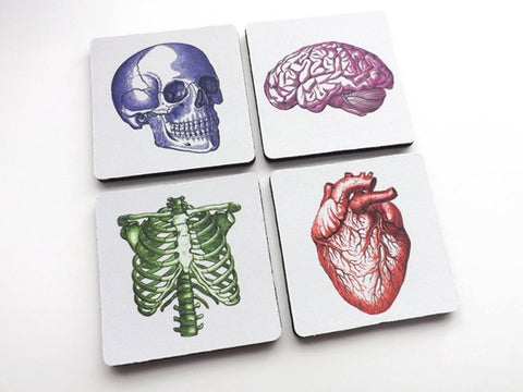 Medical Gift for Nurse Doctor anatomy drink coasters dorm room decor student lpn rn md do pa physician assistant practitioner mug mat nerd-Art Altered