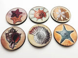 Ocean Shells Coasters mug mats hostess gift coastal beach sea nautical starfish party favor shower stocking stuffer nature home decor-Art Altered