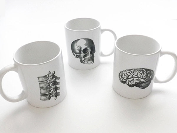 Anatomy coffee Mugs cups halloween skull brain physician assistant male nurse medical student gifts graduation biology goth spine dorm decor-Art Altered