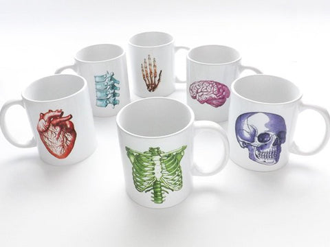 Anatomy coffee Mug graduation doctor office male nurse practitioner gift skull anatomical heart med medical student goth physician assistant-Art Altered