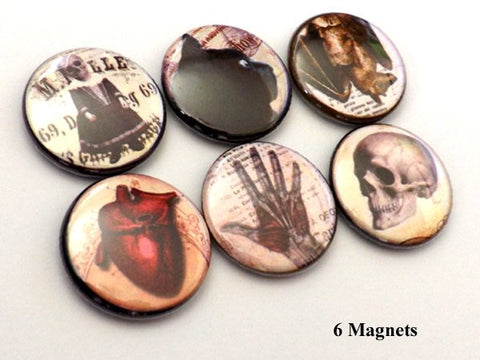 Halloween Goth fridge Magnets skull anatomical heart black cat raven crow spider party favor stocking stuffer button pins macabre home decor-Art Altered