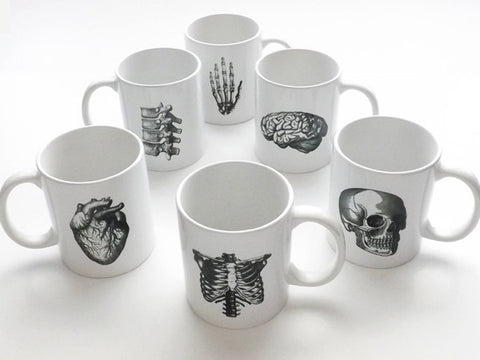 Anatomy gifts ceramic coffee mugs doctor science skull brain anatomical heart party favors student medical teacher geek goth office nursing-Art Altered