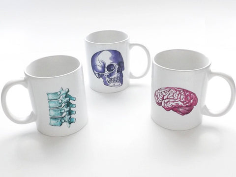 Medical Assistant anatomy gift coffee mug skull nurse practitioner physical therapist doctor spine vertebrae stocking stuffer chiropractor-Art Altered