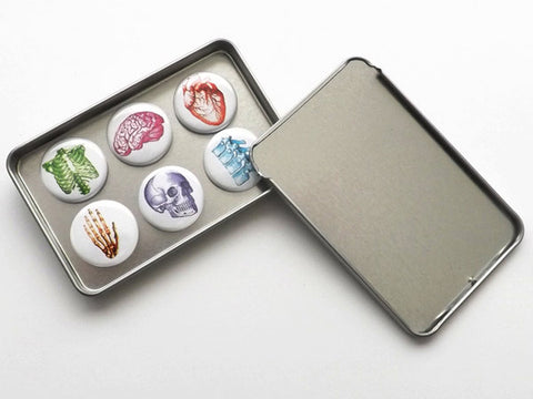 Anatomical Fridge Magnets gift set for doctor nurse practitioner medical student office dorm decor locker decoration goth home secret santa-Art Altered