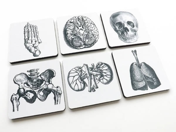 Medical Student stocking stuffer coasters graduation coworker office gift lungs hip kidneys podiatrist nephrologist pulmonary gothic decor-Art Altered