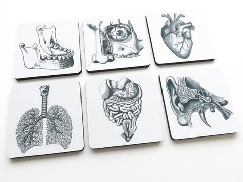 Medical School Graduation Gift drink coaster set goth decor jaw eye ear lungs heart ophthalmologist optometrist pulmonary gastroenterologist-Art Altered