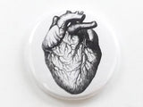 Medical Anatomy anatomical Heart one fridge magnet button pin anatomy coaster mirror bottle opener stocking stuffer goth gift refrigerator-Art Altered