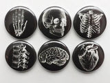 Anatomy Button Pins badges black white human anatomical heart graduation doctor male nurse stocking stuffer magnet set novelty gift goth-Art Altered