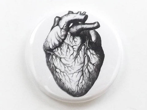 Anatomical Heart Anatomy (1) one button pin anatomy fridge magnet coaster mirror bottle opener stocking stuffer goth gift refrigerator-Art Altered