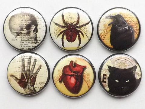 Goth Fridge Magnets macabre horror skull anatomical heart black cat halloween party favor button pins gift trick treat raven spider web crow-Art Altered