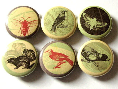 Fridge Magnets Wildlife Woodland Creatures refrigerator retro bee squirrel birds crow stocking stuffers shower gifts nature button pins-Art Altered