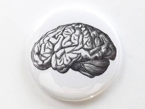 Fridge Magnet Brain human anatomy medical science gift geekery goth black and white doctor nurse physician-Art Altered