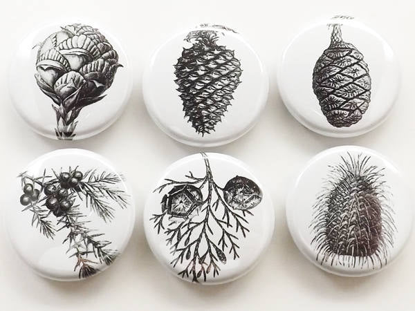 Pinecone button pins fridge magnets coasters conifers nature black white backpack badges pine tree cone outdoors forest coworker gift-Art Altered
