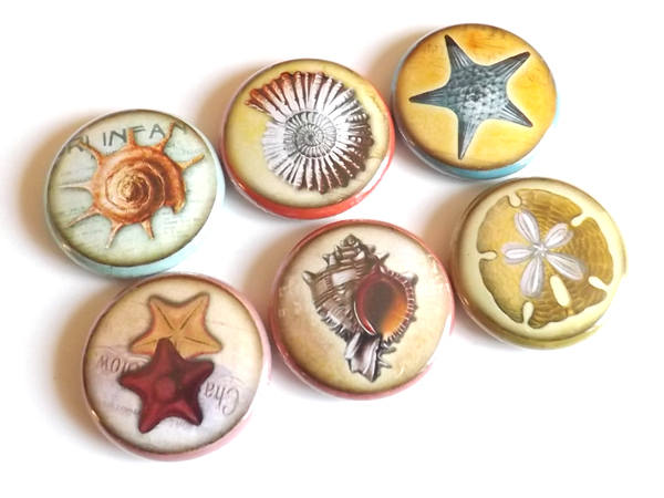 Ocean fridge magnet gift sea refrigerator beach party favors stocking stuffers starfish shells sand dollar flair pins nautical coastal-Art Altered