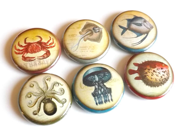 Fish Ocean Sea refrigerator button magnets nautical jellyfish puffer octopus gift party favors stocking stuffer pins beach rustic home decor-Art Altered